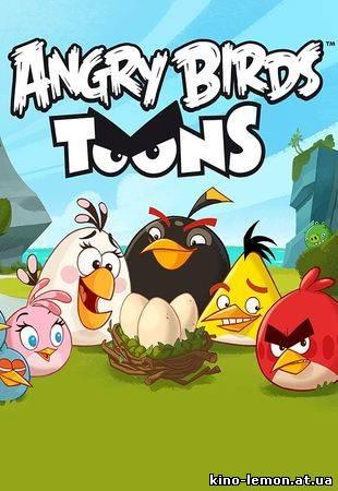 Злые птицы злі пташки